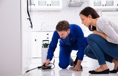 residential pest control follow up visit
